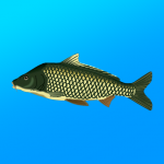 True Fishing. Fishing simulator  1.14.3.666 (MOD Unlimited Money)