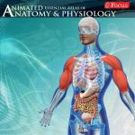 Anatomy and Physiology-Animated (Premium Cracked) 2.4