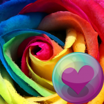 Beautiful Roses HD Wallpapers (Premium Cracked) 2.1.13