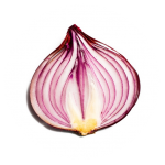 Onion Search Engine (Premium Cracked) 2.4.0