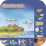 Class 7 Science NCERT Solution (Premium Cracked) 1.25