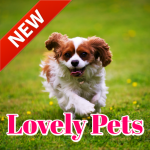 Cute Pets Wallpapers Background (Premium Cracked) 9.09.02.1