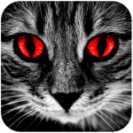 Horror and Spooky Stories – Chat Stories ES (Premium Cracked) 1.7.4