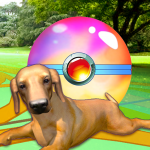 Puppy GO (MOD, Unlimited Money) Puppy GO (MOD, Unlimited Money) 2.8