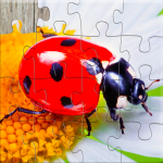 Insect Jigsaw Puzzles Game – For Kids & Adults 🐞 (MOD, Unlimited Money) 25.2