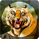 Forest Animal Hunting 2018 – 3D (MOD, Unlimited Money) 1.2.3