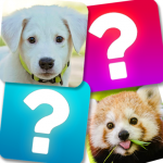 Memory Game: Animals  (MOD, Unlimited Money) 5.1