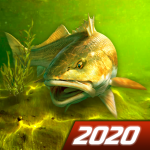 My Fishing World – Realistic fishing (MOD, Unlimited Money) 1.14.94