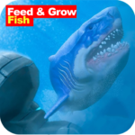Advice : feed and grow fish (MOD, Unlimited Money) 1.0