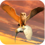 Clan of Owl (MOD, Unlimited Money) 1.1