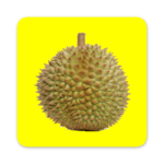 DURIAN (MOD, Unlimited Money) 1.2