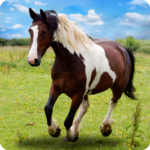 Horse Derby Survival Game: Free Horse Game (MOD, Unlimited Money) 1.5