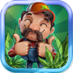 CannaFarm Weed Farming Collection Game   (MOD, Unlimited Money) 1.8.702