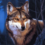 Wolf Jigsaw Puzzles (MOD, Unlimited Money)